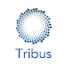 Download 30D TRIBUS 1.1.2 APK