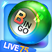 Download Bingo City Live 75+Vegas slots 12.30 APK