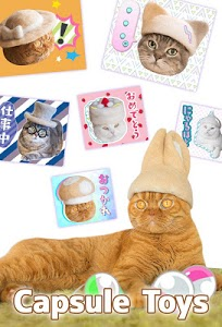 screenshot of Cats' Hair Hats Stickers Free version 2.0.4