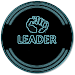 Download LEADER 19.1 APK