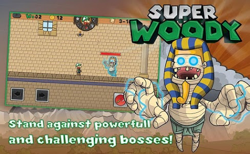 screenshot of Super Woody with Lost World version 30