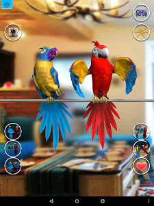 screenshot of Talking Parrot Couple Free version 1.1.7